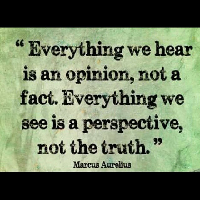 everything-we-hear-is-an-opinion-not-a-fact-everything-we-see-is-a-perspective-not-the-tru